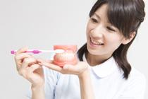 . 歯石除去・むし歯治療